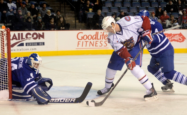Hamilton. Ontario, Friday, December 13,2013 - Hamilton Bulldogs vs. Toronto Marlies, AHL action at Copps Coliseum Friday night. It was the Bulldogs annual Toy Toss night, where fans litter the ice with stuffed toys following the Dogs first goal. Dogs Mike Blunden has a scoring chance in front of Marlie's goalie Drew MacIntyre. Photo by: Barry Gray, The Hamilton Spectator.
