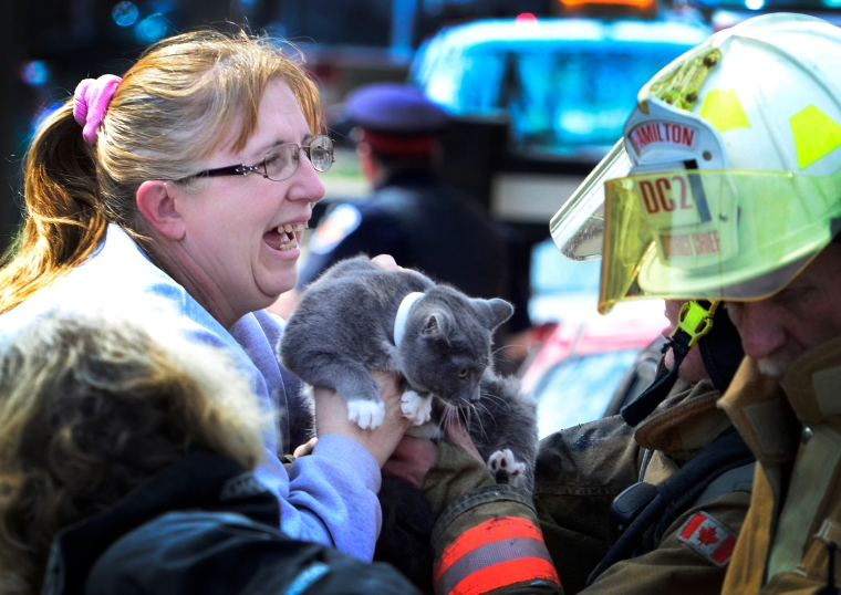 A woman reacts as a firefighter hands her her cat the family could not find when fire broke out in the house.  I just like the look of joy and relief on her face. John Rennison The Hamilton Spectator